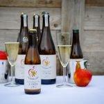 Charringtons Cider